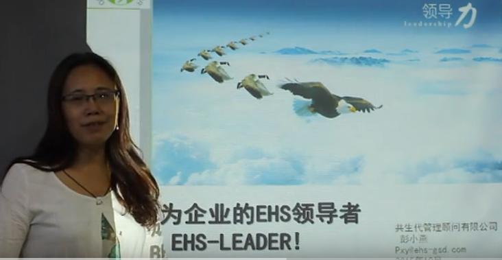 成为EHS企业领导者